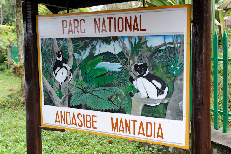 Parc National de Adasibe Mantadia Perinet, 08.2015